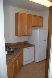 2107 Dishwasher Before