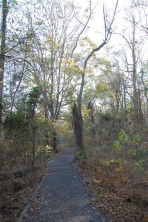 The Landsford Canal Trail