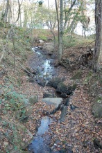 A small stream flowing to the Catawba River diverted under the canal