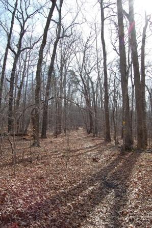 Along the farm trail