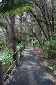 HI 04 - NVP Sulphur Banks Trail